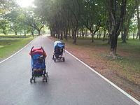 Путешествия с детьми: Таиланд. Наши заметки: Сукхотай - мы еще тут