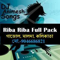 Riba Riba 2nd Version (2013 Hip Hop Mix) - DJ Animesh.mp3