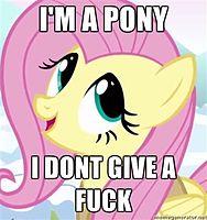 POPOPOneys Im_a_pony_I_dont_give_a_fuck